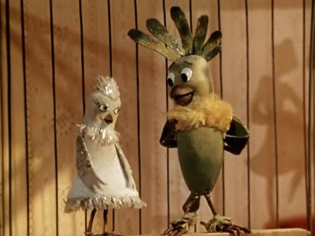 Боцман и попугай