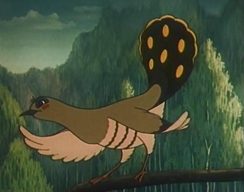 Красивая картинка птица кукушка